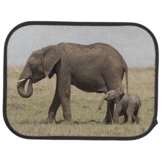 Mère d'éléphant africain avec la marche de bébé tapis de voiture