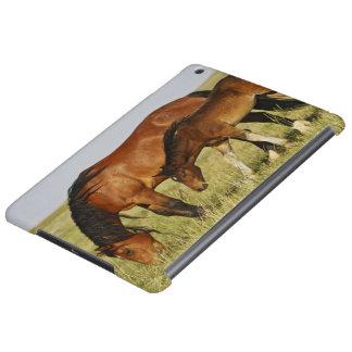 Mère sauvage de cheval sauvage de caballus d'Equus