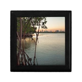 Miami et palétuviers au coucher du soleil petite boîte à bijoux carrée