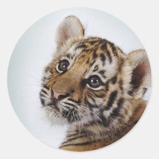 Mignon-petit-tigre Sticker Rond
