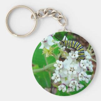 Milkweed et monarque porte-clé rond