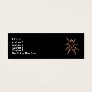 Mini Carte De Visite Araignée de tarentule