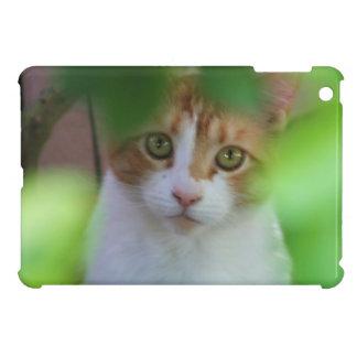 Mini cas d'ipad orange de chat tigré étui iPad mini