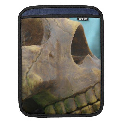 Mini coque ipad de crâne poches iPad