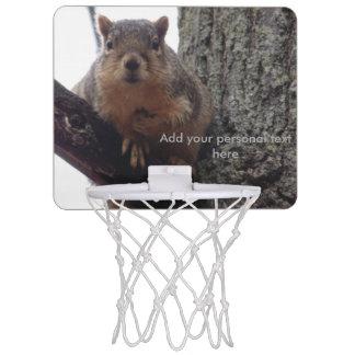 Mini-panier De Basket Écureuil regardant votre mini match de basket