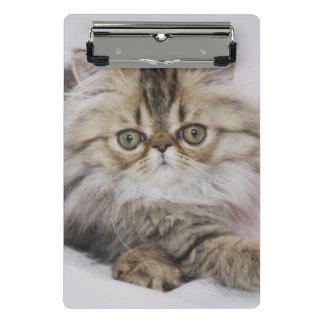 Mini Porte-bloc Chat persan, catus de Felis, chat tigré de Brown,