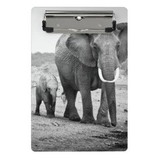Mini Porte-bloc Éléphant africain et veaux | Kenya, Afrique