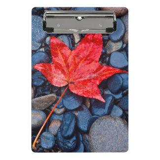 Mini Porte-bloc Feuille rouge lumineuse d'automne