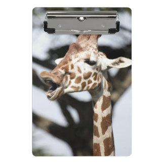 Mini Porte-bloc Girafe réticulée faite face drôle, San Francisco