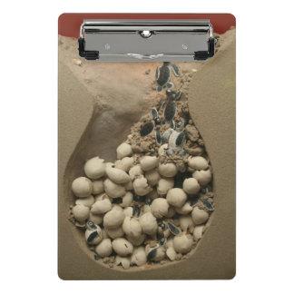 Mini Porte-bloc Hachure d'oeufs de tortue de bébé