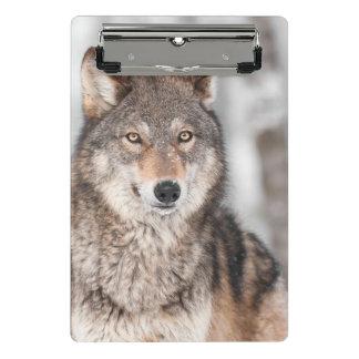 Mini Porte-bloc Loup gris (lupus de Canis) avec un dos d'oreille