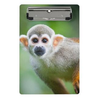 Mini Porte-bloc Plan rapproché d'un singe-écureuil commun