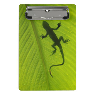 Mini Porte-bloc Silhouette de Gecko