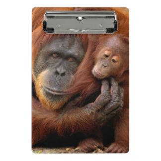 Mini Porte-bloc Un orang-outan de mère et de bébé partagent une