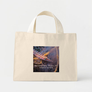 Mini Tote Bag Hawkfish au nez long