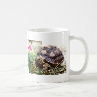 minuscule mug blanc