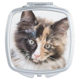 Miroir Compact Chaton adorable de calicot