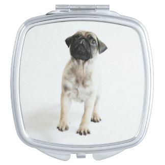 Miroir Compact Chiot mignon de carlin