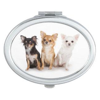 Miroir compact de chiwawa