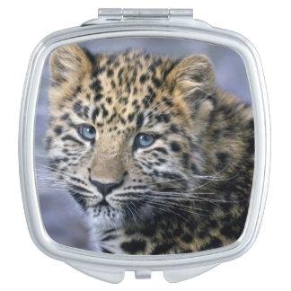 Miroir compact de CUB de léopard