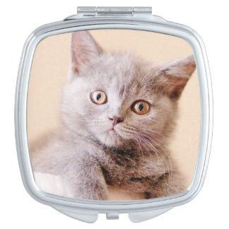Miroir De Maquillage Chat britannique mignon de Shorthair