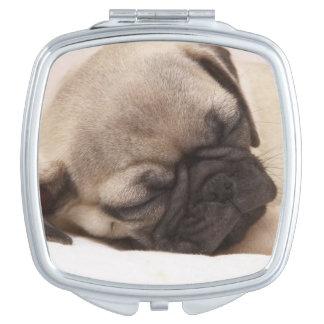 Miroir De Maquillage Chiot dormant solidement