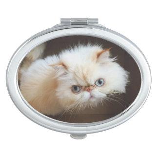 Miroir De Poche Chat dans une boîte