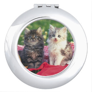 Miroir De Poche Deux chatons se reposant sur une couverture