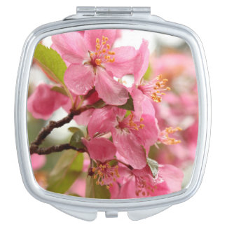 Miroir De Voyage Apple rose fleurissent photo de fleur