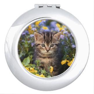 Miroir De Voyage Chat se reposant dans le jardin d'agrément