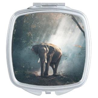 Miroirs À Maquillage Éléphant asiatique dans une clairière ensoleillée