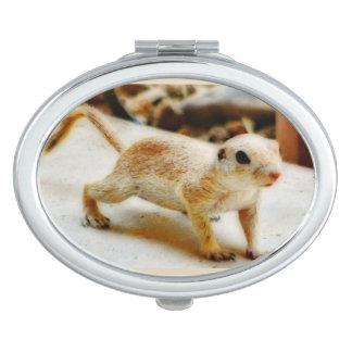 Miroirs Compacts Miroir de contrat d'écureuil moulu de bébé