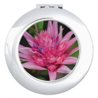 Miroirs De Poche Beauté rose
