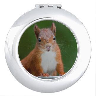 Miroirs De Voyage Miroir assoiffé de contrat d'écureuil