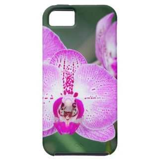 Miscellaneous - Orchid Patterns Seven Coque iPhone 5