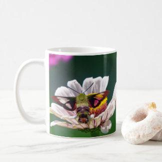 Mite de colibri mug
