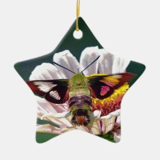 Mite de colibri ornement étoile en céramique
