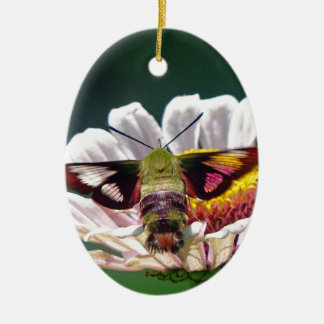 Mite de colibri ornement ovale en céramique