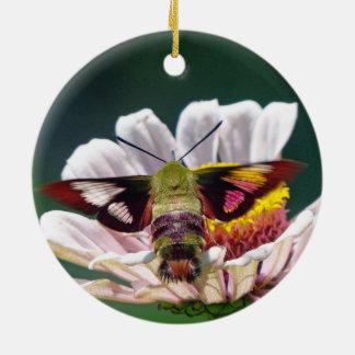 Mite de colibri ornement rond en céramique