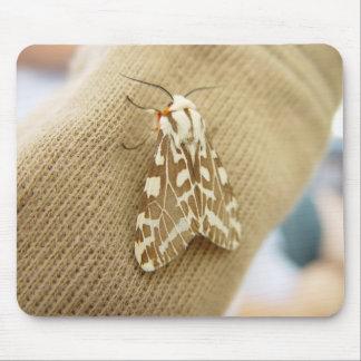 Mite sur la douille de chemises tapis de souris