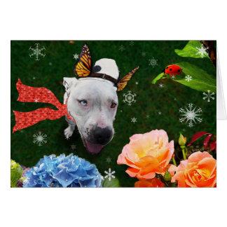 Mitzy le Mariposa, carte de voeux de vacances