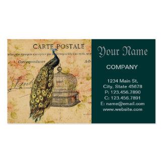 mode florale vintage de Paris de cage à oiseaux de Carte De Visite Standard