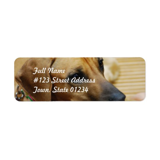 Modèle 2 d'étiquette postale - customisé étiquette d'adresse retour