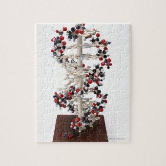 Modèle d'ADN Puzzle