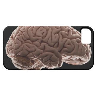 Modèle de l'esprit humain, tir de studio coque barely there iPhone 5