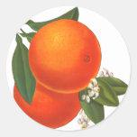 Modèle vintage d'art de caisse d'oranges autocollants ronds