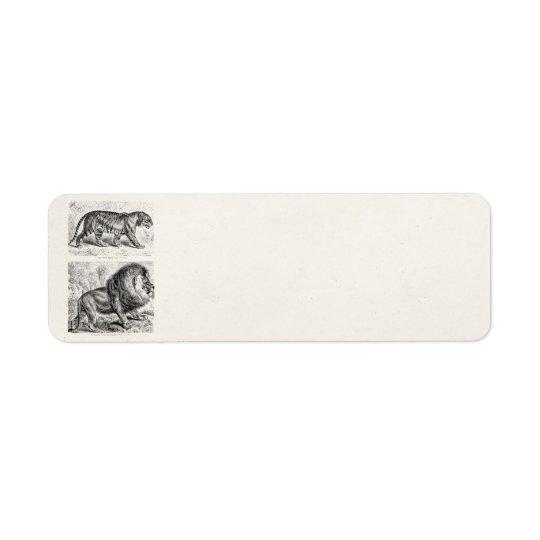 Modèle vintage de tigres d'illustration de tigre étiquettes d'adresse retour