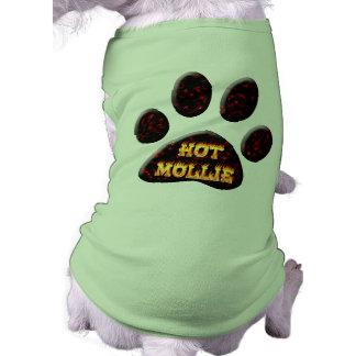 Mollie chauds le feu et chemise de chien de flamme vêtement pour animal domestique