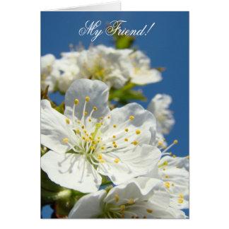 Mon ami ! Fleurs de cerisier de ressort de cartes