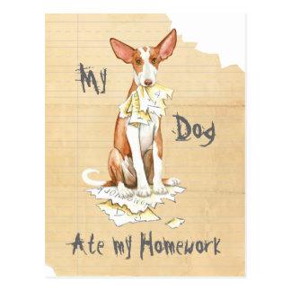 Mon chien d'Ibizan a mangé mon travail Carte Postale
